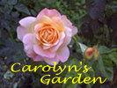 beautifulrose-title-100